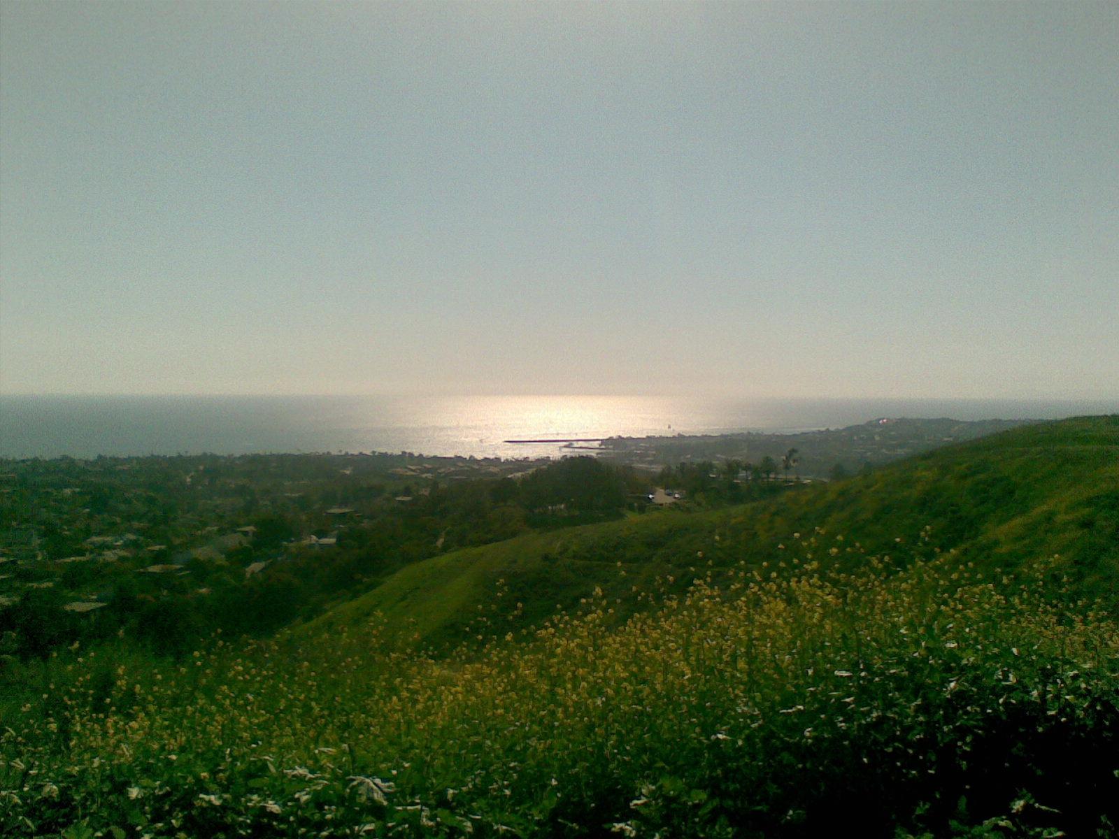 Awsome Views